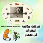 شركة مكافحة حشرات في عجمان  0569057991