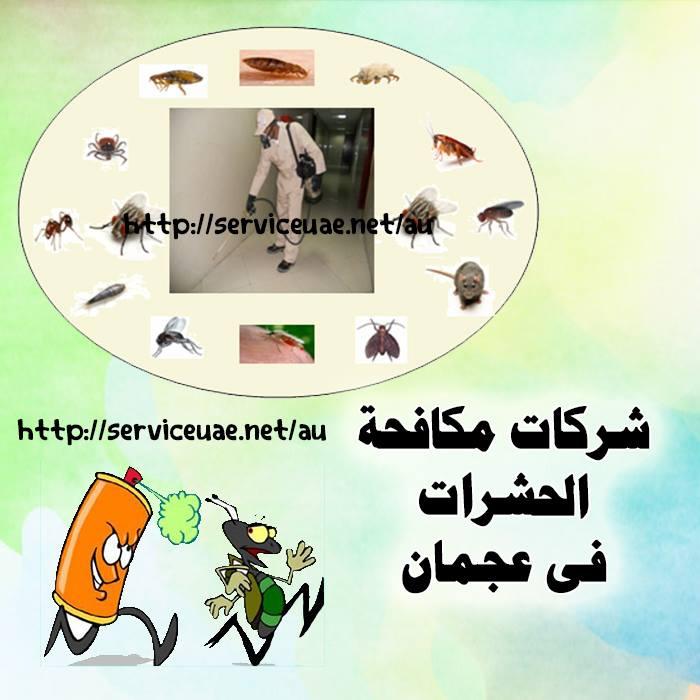 ارخص شركة مكافحة حشرات في عجمان