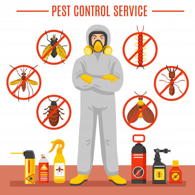 مكافحة حشرات براس الخيمة   0555514982